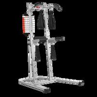 Bowflex BodyTower--thumbnail