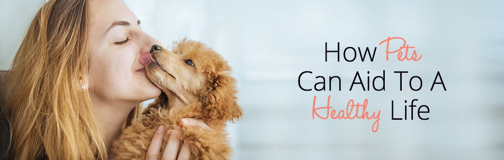 How Pets Can Aid To A Healthy Life