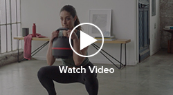 Watch the Goblet Squat Video