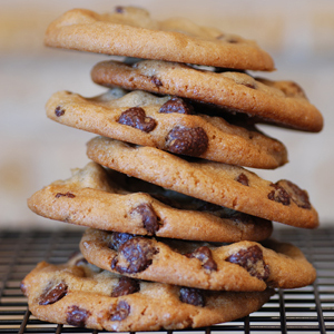 Chocolate Chip Oatmeal Protein Cookies