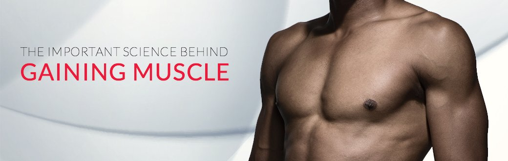 The Important Science Behind Gaining Muscle