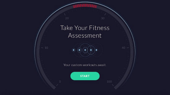Fitness Assessment - App Screenshot