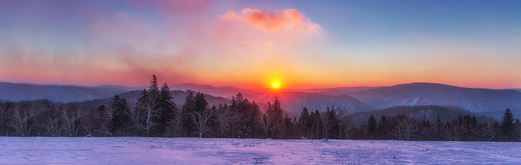 A sunset over a snowy field and trees.