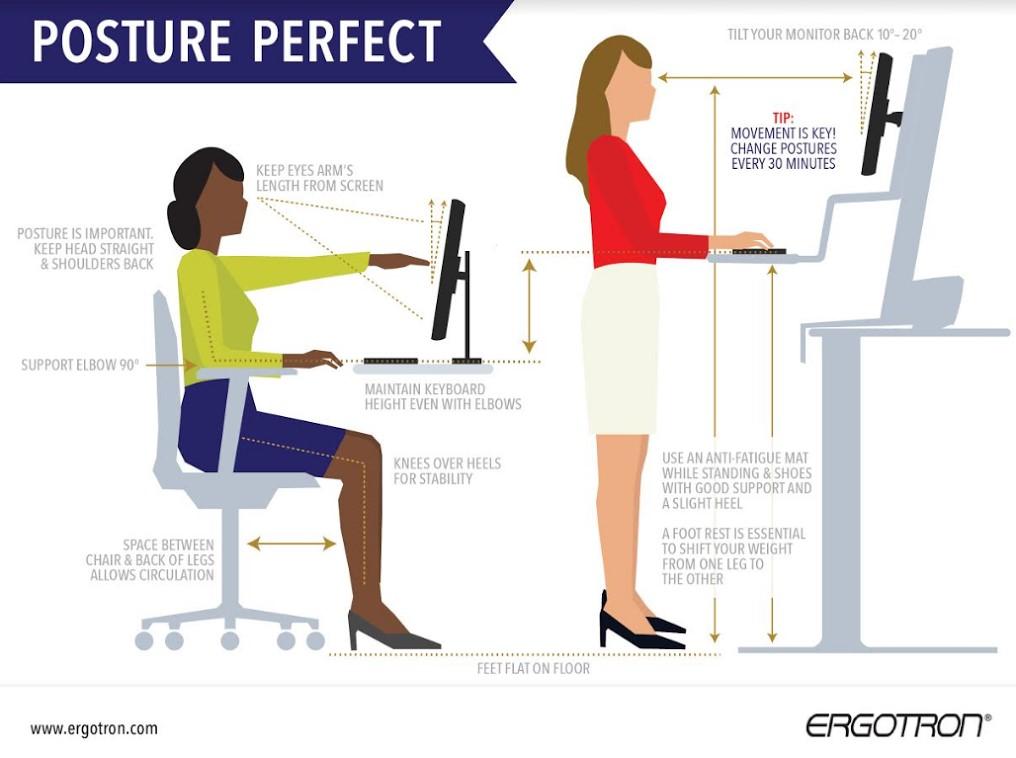 Posture Perfect Infographic