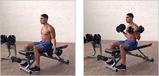 Man performing a biceps curl.